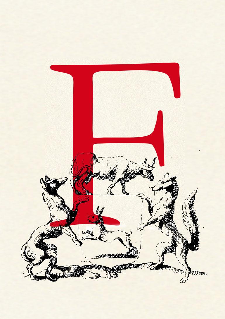 FREUDE | Wein seit 2012